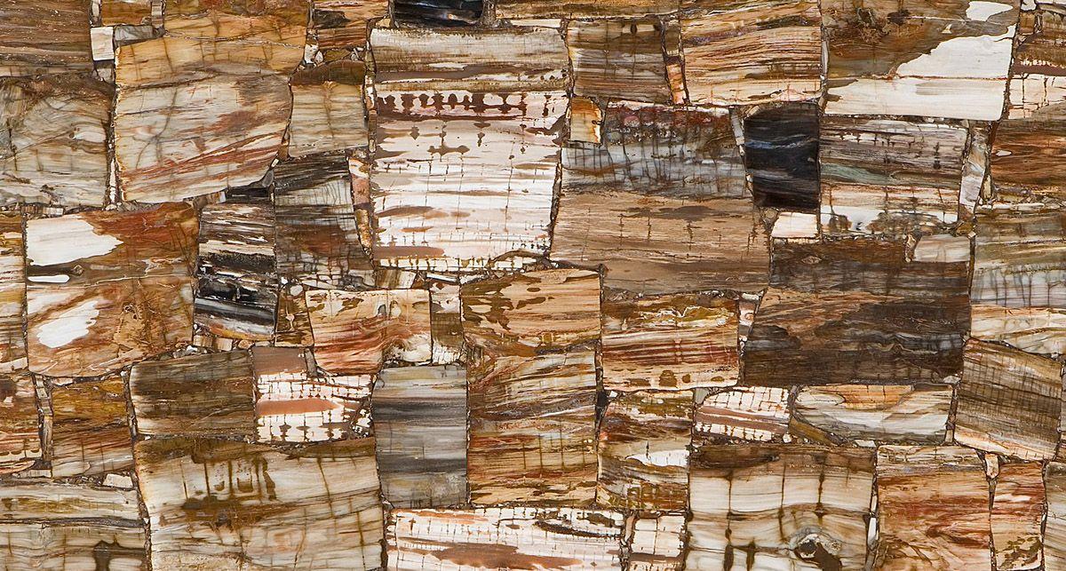 Caesarstone 8331 Petrified Wood Classic